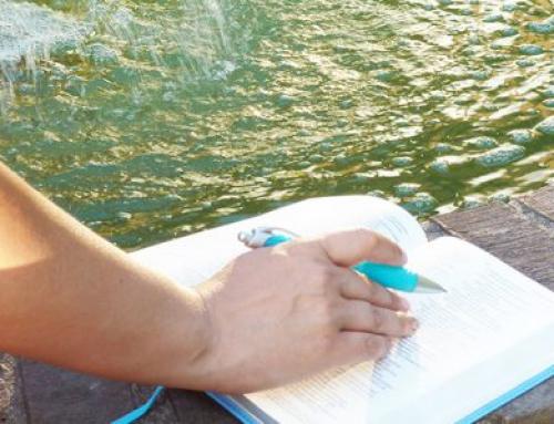 Nu kan du studera på engelska på bibelskolan Jesus Helar och Upprättar – en internationell linje startar 2 september